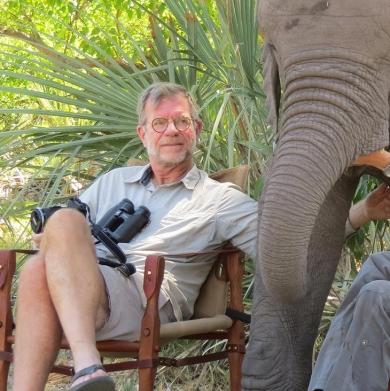 scott-elephant